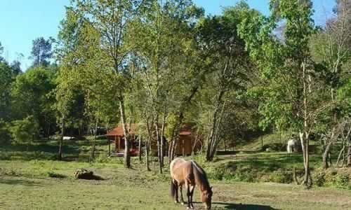 Quinta da Abelenda