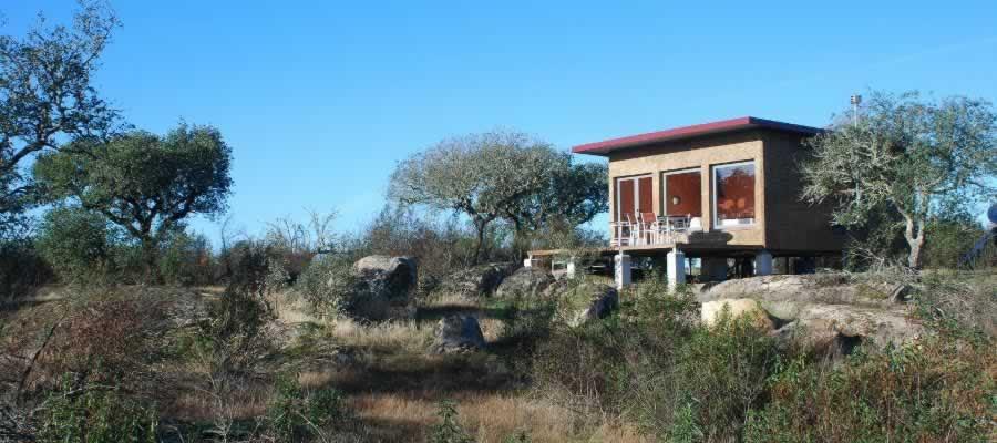 Bubulcus & Bolotas Camping