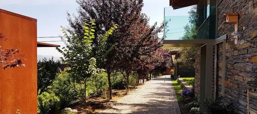 Vila Marim Casas de Campo em pleno Douro