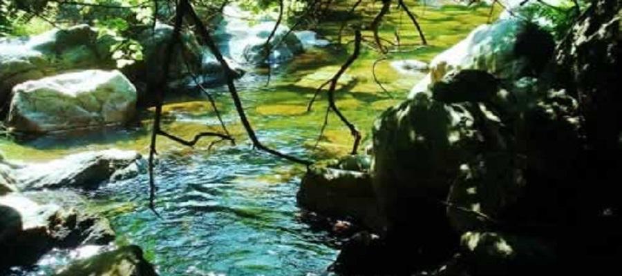 Ribeira de Alge